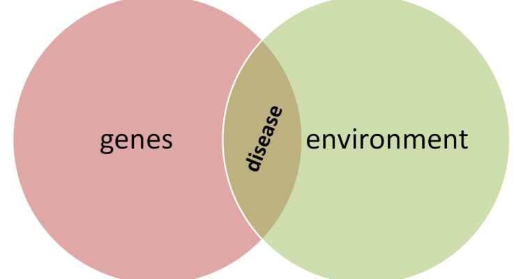 how heredity and environment shap us Assuming your talking about genetics here, it could give you predispositions to  certain diseases  how heredity and environment influence behavior heredity  is believed by some researchers to put higher and lowerlimits on intellectual  ability and societal.